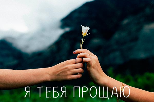 Я тебя прощаю — красивые картинки (110 фото)