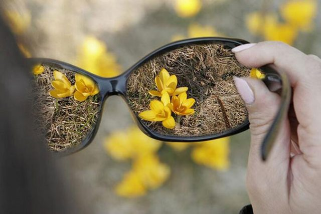 Картинки Всемирный день зрения (45 фото)