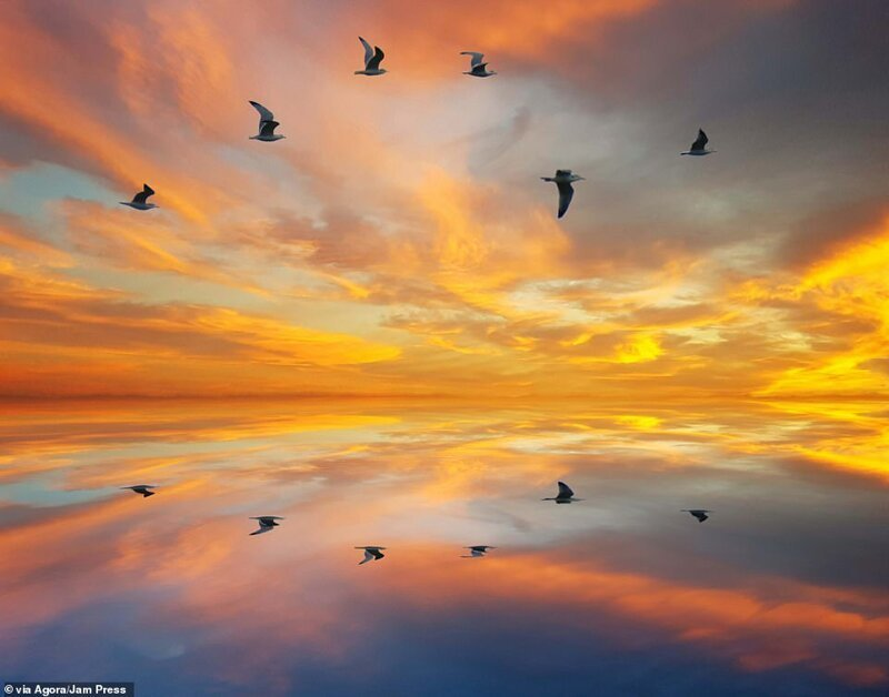 Самые красивые картинки (274 фото)
