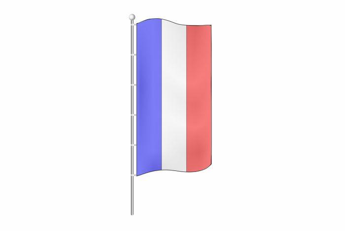 Картинки флаг Франции (41 фото)