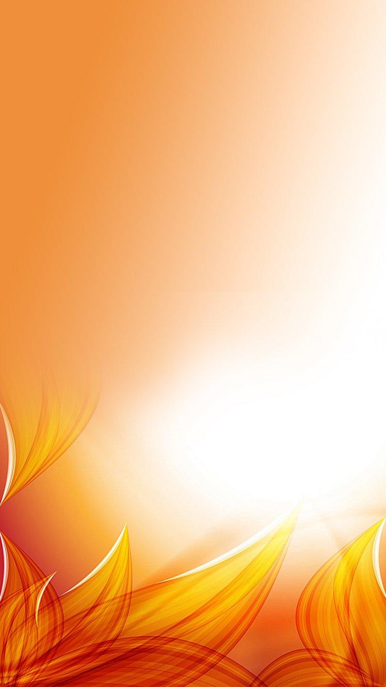 Оранжевый цвет — красивые картинки (150 фото)
