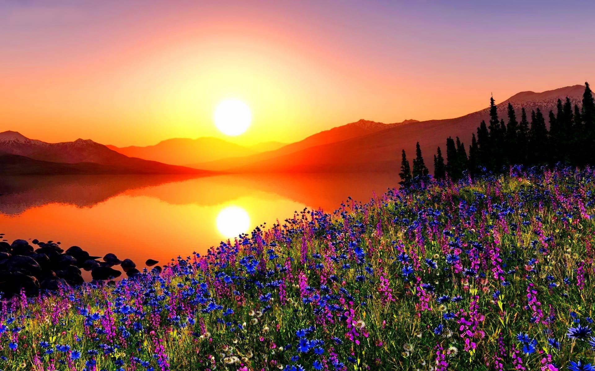 Картинки красивые лето (250 фото)